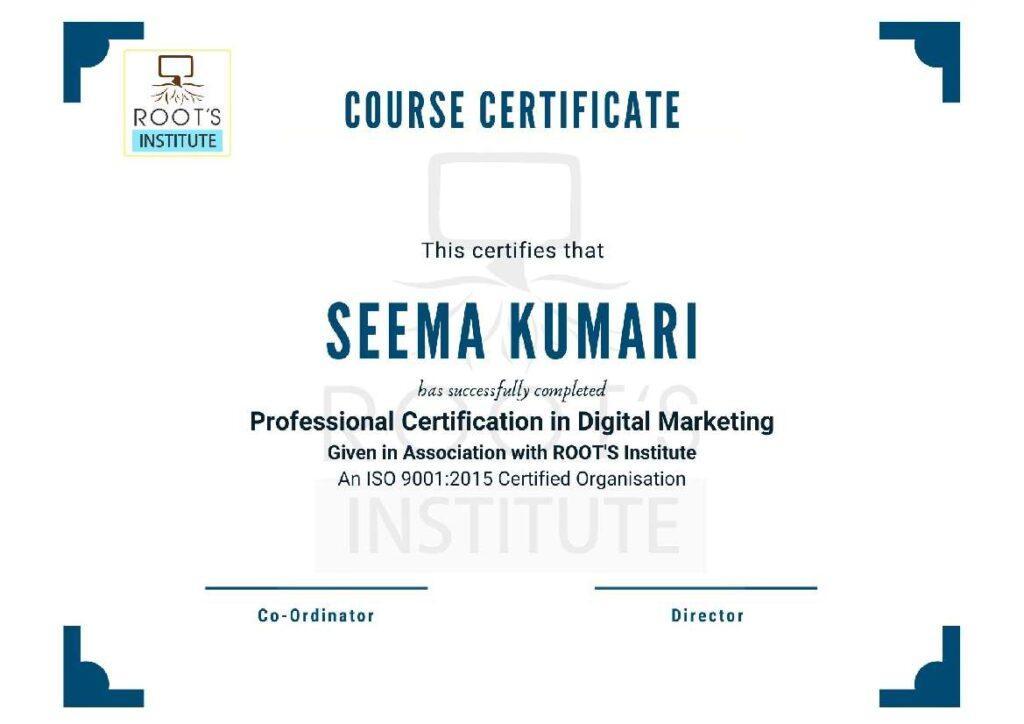 Institute Certificate