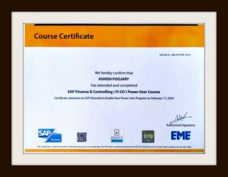 Sap fico certificate_Roots Institute